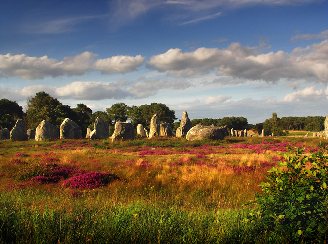 France,Brittany,Carnac,megalithic menhir alignment